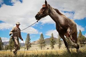 人間万事塞翁が馬,幸運,不運